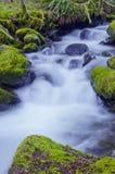 Wasserfall mit moosigen Felsen und weichem Wasserstrom Stockfotografie