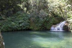 Wasserfall mit Pool Lizenzfreie Stockfotografie