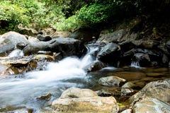 Wasserfall mit tiefgrünem Waldhintergrund Lizenzfreie Stockfotos