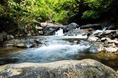 Wasserfall mit tiefgrünem Waldhintergrund Lizenzfreies Stockbild