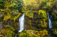 Wasserfall nah oben im Wald Lizenzfreies Stockfoto