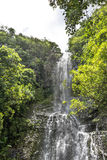 Wasserfall in Nationalpark Haleakala, Maui, Hawaii Lizenzfreies Stockfoto