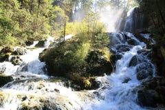 Wasserfall in Nationalpark Jiuzhaigou von Sichuan China Lizenzfreie Stockfotografie
