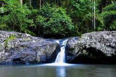 Wasserfall in Nationalpark Springbrook Warringa-Pool lizenzfreie stockfotografie