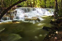 Wasserfall in Natur Lizenzfreies Stockfoto