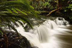 Wasserfall in Neuseeland lizenzfreie stockfotos