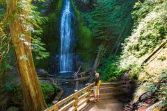 Wasserfall in olympischem Lizenzfreie Stockfotografie