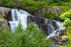 Wasserfall in Ouray Lizenzfreies Stockbild