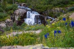 Wasserfall in Ouray Stockbilder