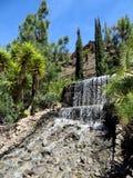 Wasserfall, Palmitos-Park Stockfoto