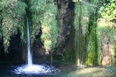 Wasserfall in Plitvice Stockfotografie