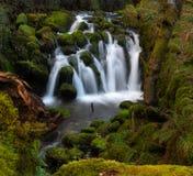 Wasserfall in Povoa de Lanhoso am Winter lizenzfreie stockbilder
