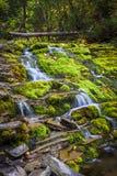 Wasserfall in Schwarzweiss Lizenzfreie Stockfotos