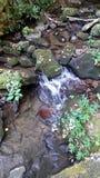 Wasserfall sind klein dennoch schön stockbilder