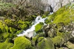 Wasserfall Skaklia, Bov-Dorf, Iskarsko-Schlucht Stockfotos