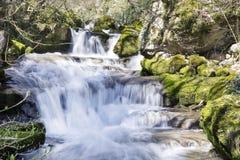 Wasserfall Skaklia, Bov-Dorf, Iskarsko-Schlucht Stockfotografie