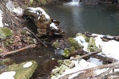 Wasserfall sourse stockfoto