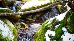 Wasserfall sourse stock video