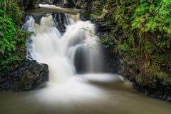 Wasserfall am Tawau-Hügel-Park Stockfotografie