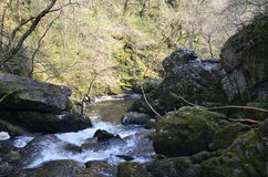 Wasserfall, Teufelschlucht, Wicklow Irland Stockbilder