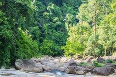 Wasserfall tief im tiefen Wald Lizenzfreies Stockbild