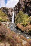 Wasserfall Tongariro im Nationalpark Stockbilder