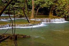 Wasserfall und Baum im Sommer Stockfoto