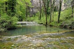 Wasserfall und Becken von Baume les messieurs in Frankreich Stockbild