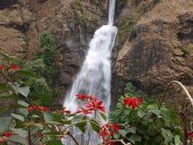 Wasserfall und Blumen Stockbilder
