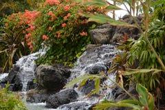 Wasserfall und Blumen Stockfotos