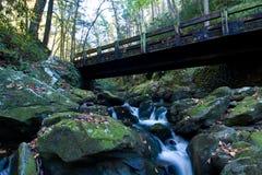 Wasserfall und Brücke lizenzfreie stockbilder