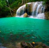 Wasserfall und ein blaues Pool mit Fischen Lizenzfreie Stockfotos
