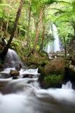Wasserfall und Fluss Lizenzfreies Stockfoto
