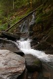 Wasserfall und Fluss im Wald Lizenzfreies Stockbild