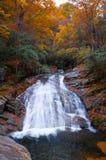 Wasserfall und goldener Fallwald Stockfotos