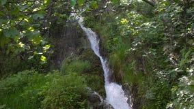 Wasserfall und grüne Natur stock video footage