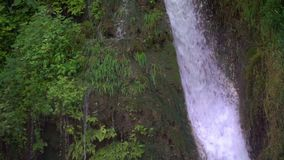 Wasserfall und grüne Natur stock footage