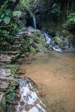 Wasserfall und kleiner See im Regenwald von Khao Sok sanctuar Stockfotografie