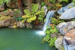 Wasserfall und Lagune an Mt Tomah NSW Australien Stockbilder
