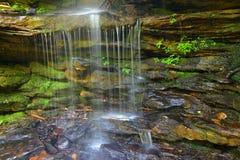 Wasserfall und Moos stockbilder