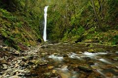 Wasserfall und Nebenfluss Lizenzfreies Stockbild