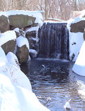 Wasserfall und Schnee Lizenzfreie Stockfotos
