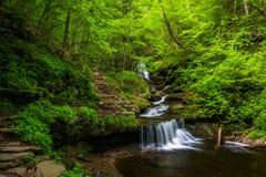 Wasserfall und Spur bei Ricketts Glen State Park, Pennsylvania stockfoto