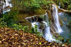 Wasserfall und trockenes Blatt Lizenzfreie Stockfotos