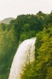 Wasserfall und wilde Vegetation des Grüns Lizenzfreie Stockfotografie