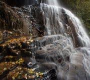 Wasserfall und Wurzeln (seine Res kombiniert) Stockbilder