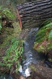 Wasserfall unter geschnittenem Baum Stockfotografie