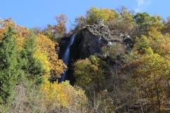 Wasserfall von den Felsen im Wald lizenzfreie stockfotos