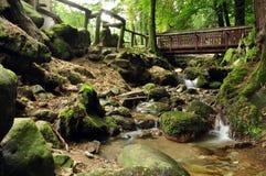 Wasserfall von stresa Lizenzfreie Stockfotos