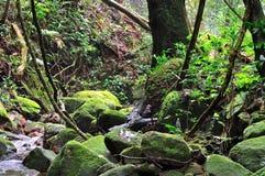 Wasserfall von Thailand Lizenzfreies Stockbild